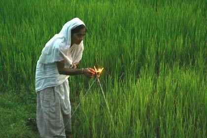 Woman lighting Akashbanti in a paddy field