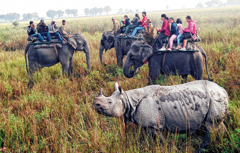 COVID Scare: Assam Shuts Down all National Parks, Sanctuaries for visitors