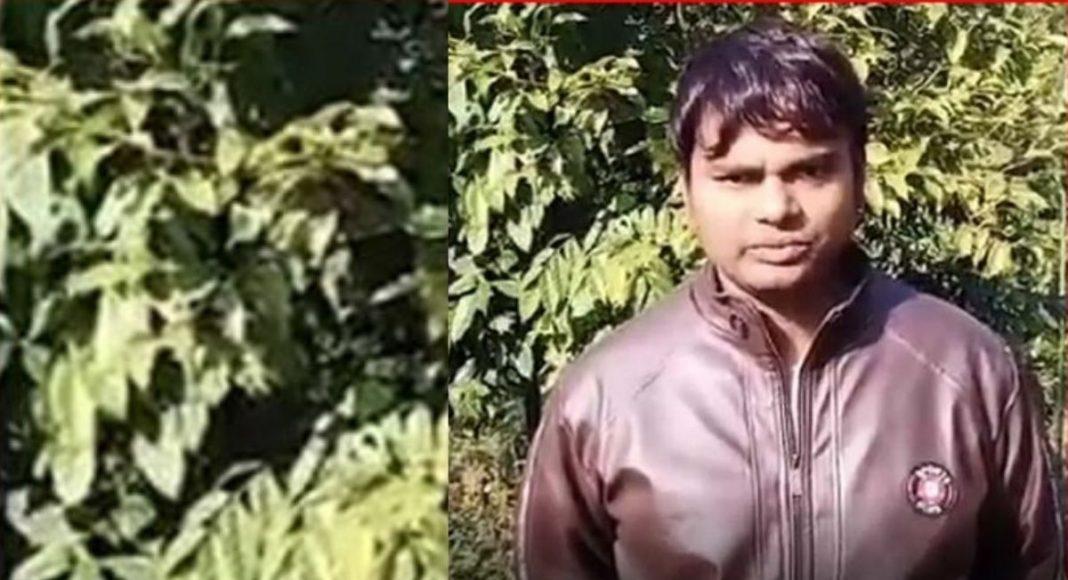 ULFA (I) releases abducted Quippo employee Ram Kumar