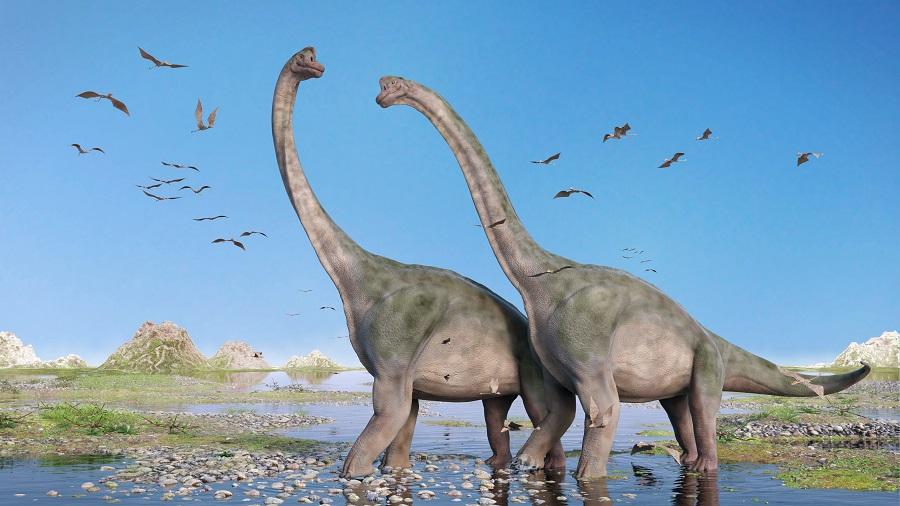 BREAKING: 100 million years old Dinosaur bones found in Meghalaya